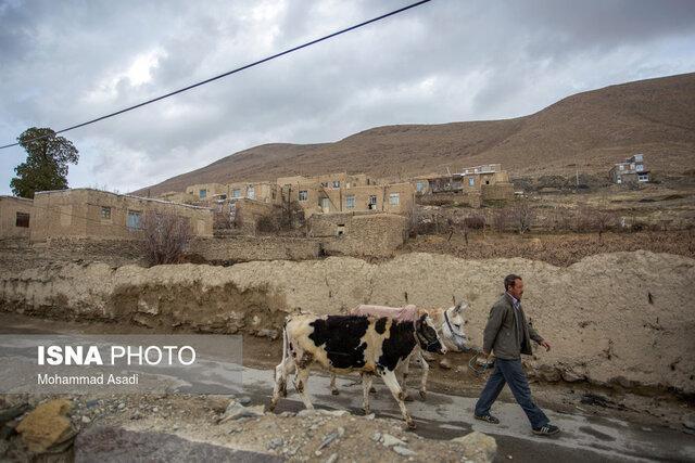 تحمیل زندگی شهری به روستائیان، دام ها را از روستائیان نگیرید